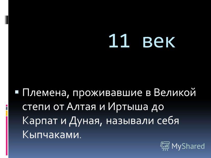 11 век Племена, проживавшие в Великой степи от Алтая и Иртыша до Карпат и Дуная, называли себя Кыпчаками.