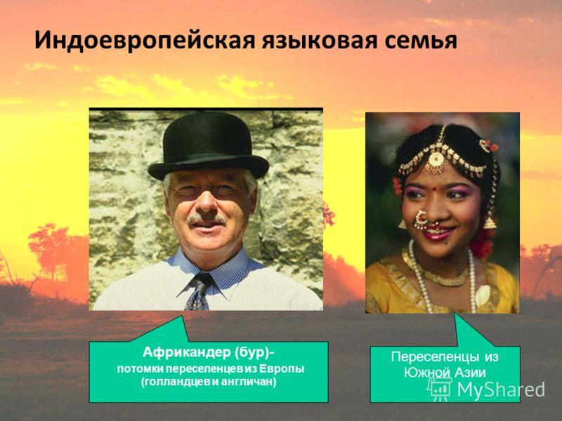 Индоевропейская языковая семья Африкандер (бур)- потомки переселенцев из Европы (голландцев и англичан) Переселенцы из Южной Азии
