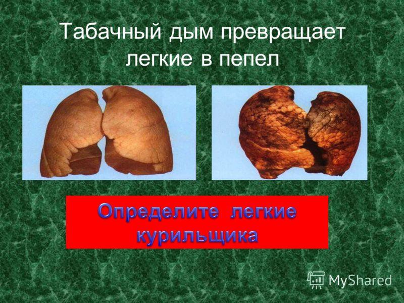 Какой вред приносит сигарета?