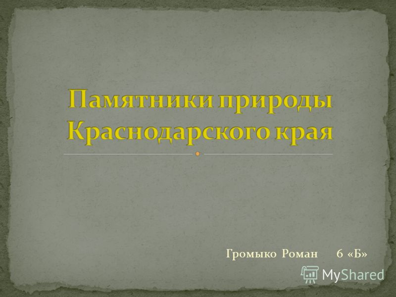 Громыко Роман 6 «Б»