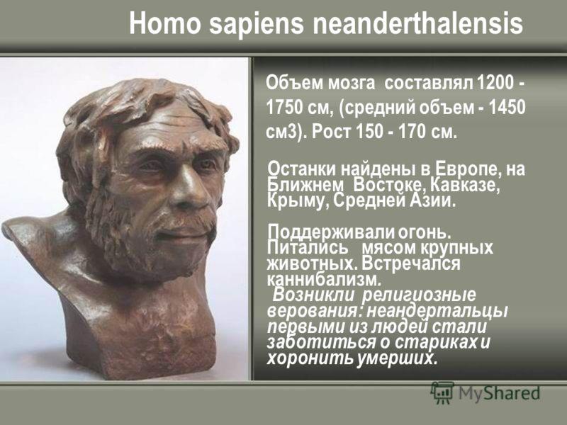 Homo sapiens neanderthalensis Объем мозга составлял 1200 - 1750 см, (средний объем - 1450 см3). Рост 150 - 170 см. Останки найдены в Европе, на Ближнем Востоке, Кавказе, Крыму, Средней Азии. Поддерживали огонь. Питались мясом крупных животных. Встреч