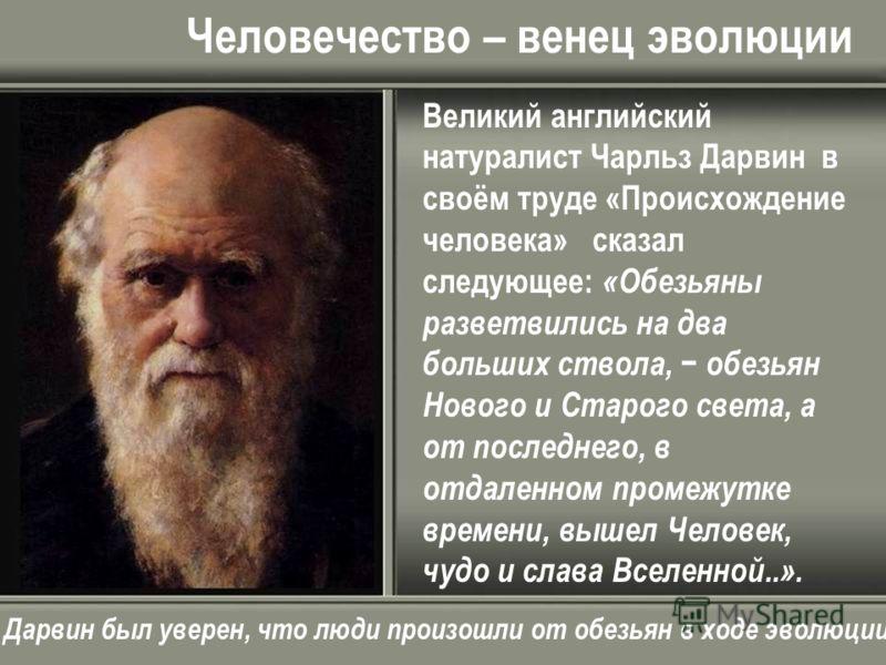 Человечество – венец эволюции Великий английский натуралист Чарльз Дарвин в своём труде «Происхождение человека» сказал следующее: «Обезьяны разветвились на два больших ствола, обезьян Нового и Старого света, а от последнего, в отдаленном промежутке