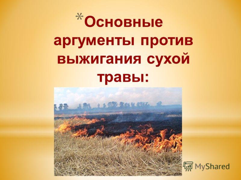 * Основные аргументы против выжигания сухой травы: