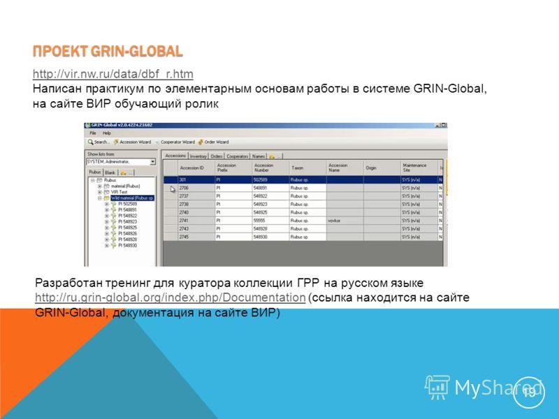 19 Разработан тренинг для куратора коллекции ГРР на русском языке http://ru.grin-global.org/index.php/Documentation (ссылка находится на сайте GRIN-Global, документация на сайте ВИР) http://ru.grin-global.org/index.php/Documentation ПРОЕКТ GRIN-GLOBA