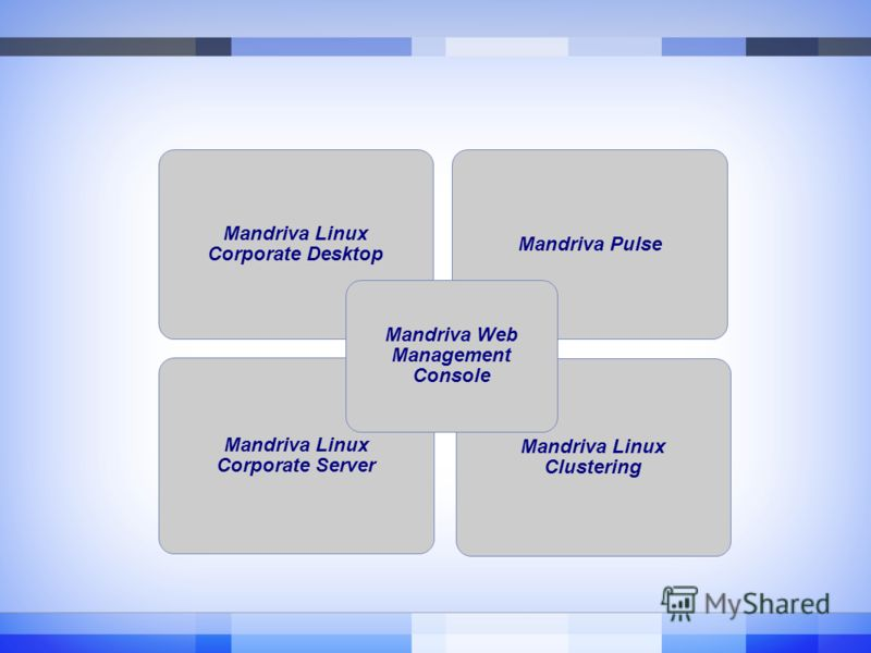 Mandriva Linux Corporate Desktop Mandriva Linux Corporate Server Mandriva Pulse Mandriva Linux Clustering Mandriva Web Management Console