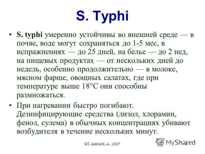 БТ. Аитов К.А., 20076 S. Typhi S. typhi умеренно устойчивы во внешней среде в почве, воде могут сохраняться до 1-5 мес, в испражнениях до 25 дней, на белье до 2 нед, на пищевых продуктах от нескольких дней до недель, особенно продолжительно в молоке,