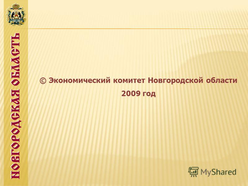 © Экономический комитет Новгородской области 2009 год