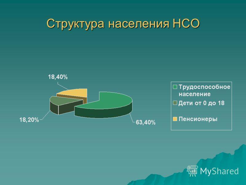 Структура населения НСО
