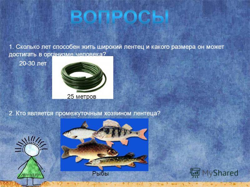 Основным способом заражения Широким Лентецом является рыба Хорошо проваривать и просаливать рыбу.
