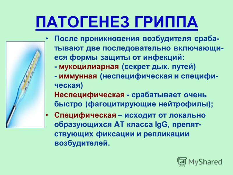 ПАТОГЕНЕЗ ГРИППА После проникновения возбудителя сраба- тывают две последовательно включающи- еся формы защиты от инфекций: - мукоцилиарная (секрет дых. путей) - иммунная (неспецифическая и специфи- ческая) Неспецифическая - срабатывает очень быстро