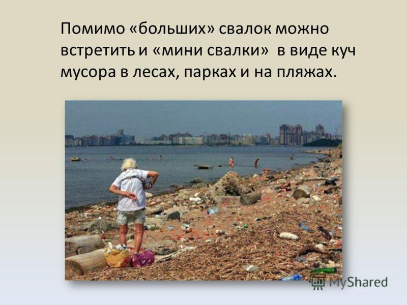 Помимо «больших» свалок можно встретить и «мини свалки» в виде куч мусора в лесах, парках и на пляжах.