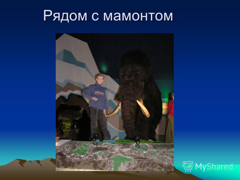Рядом с мамонтом