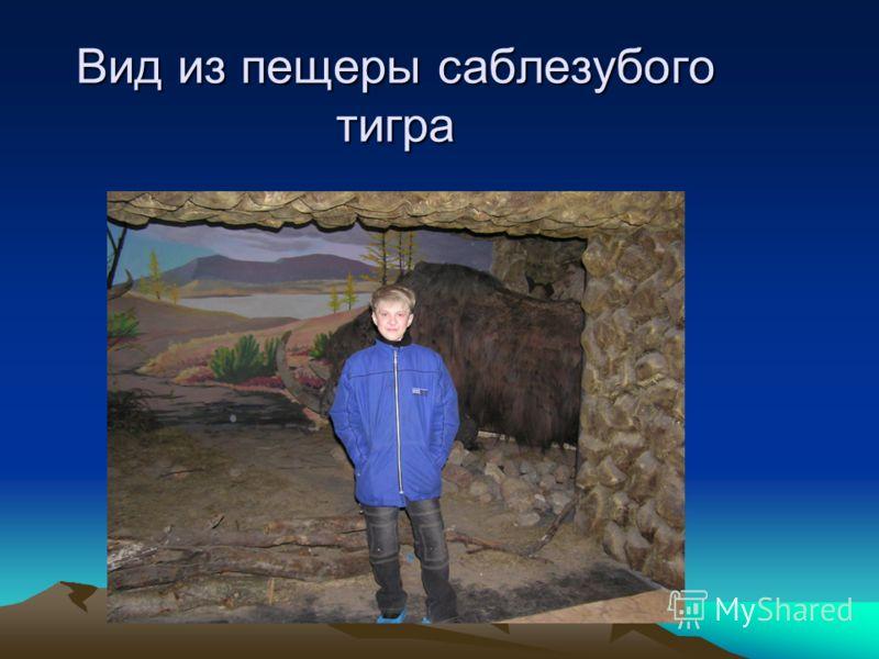 Вид из пещеры саблезубого тигра