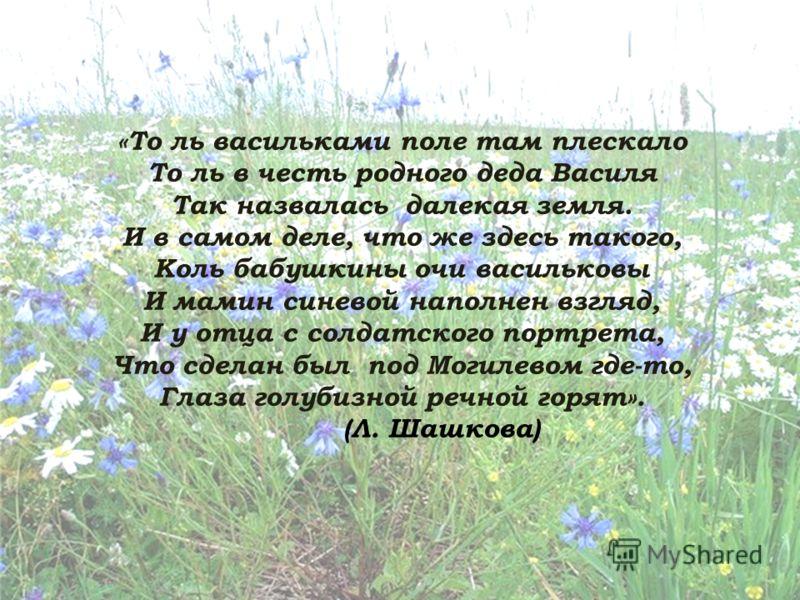 «То ль васильками поле там плескало То ль в честь родного деда Василя Так назвалась далекая земля. И в самом деле, что же здесь такого, Коль бабушкины очи васильковы И мамин синевой наполнен взгляд, И у отца с солдатского портрета, Что сделан был под