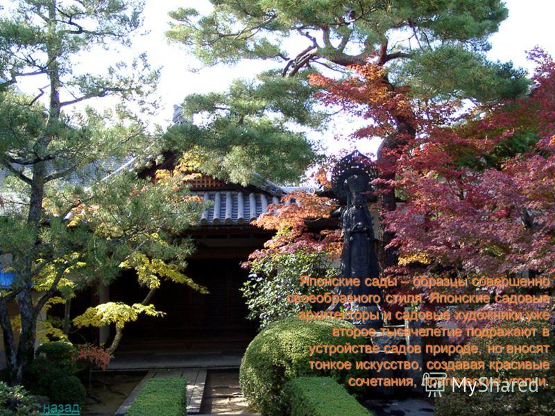 Японское искусство аранжировки цветов (икэбана) восходит своими корнями к 15 веку. В своей основе икэбана – это подбор и расстановка в вазе цветов по определённым строгим канонам, выражающим символически идею неба, земли и человека. назад