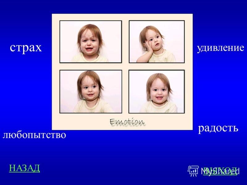 Эмоции 400 ответ Какую эмоцию выражают эти фотографии?