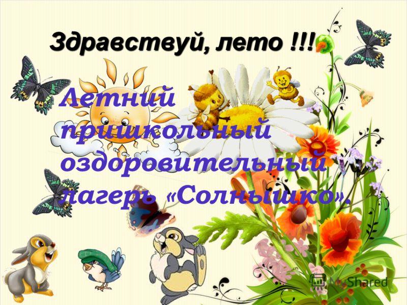 Здравствуй, лето !!! Летний пришкольный оздоровительный лагерь «Солнышко».