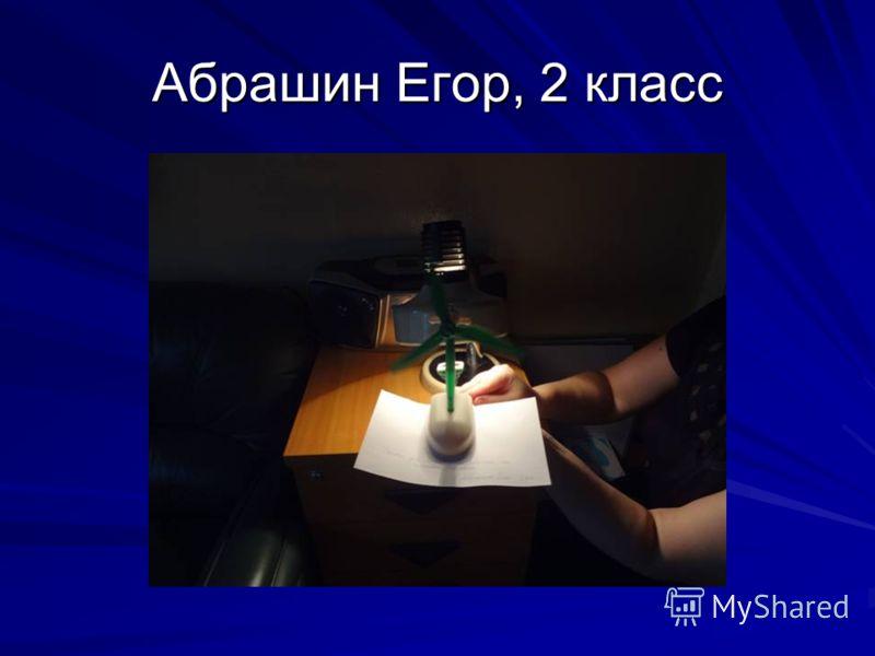 Абрашин Егор, 2 класс