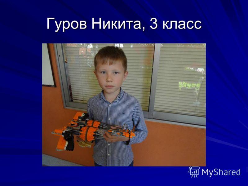 Гуров Никита, 3 класс