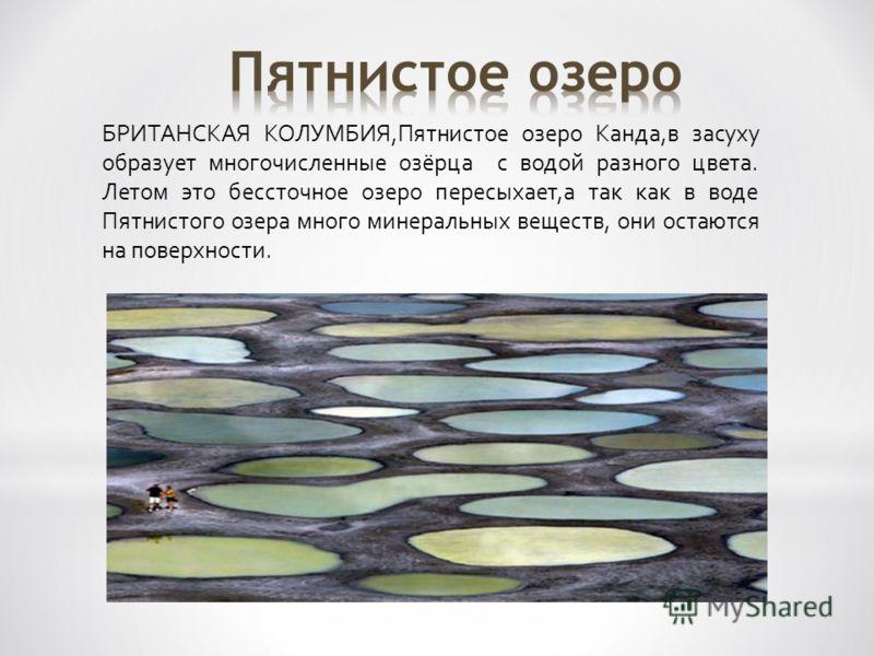 БРИТАНСКАЯ КОЛУМБИЯ,Пятнистое озеро Канда,в засуху образует многочисленные озёрца с водой разного цвета. Летом это бессточное озеро пересыхает,а так как в воде Пятнистого озера много минеральных веществ, они остаются на поверхности.