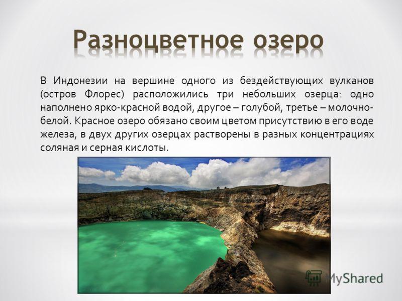 В Индонезии на вершине одного из бездействующих вулканов (остров Флорес) расположились три небольших озерца: одно наполнено ярко-красной водой, другое – голубой, третье – молочно- белой. Красное озеро обязано своим цветом присутствию в его воде желез