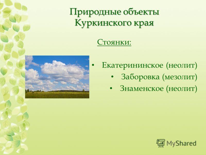 Природные объекты Куркинского края Стоянки: Екатерининское (неолит) Заборовка (мезолит) Знаменское (неолит)