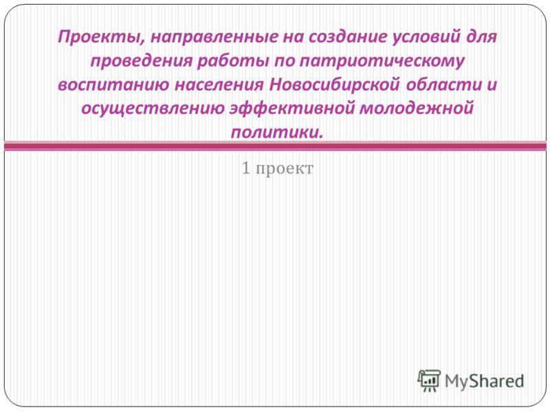 Проекты, направленные на создание условий для проведения работы по патриотическому воспитанию населения Новосибирской области и осуществлению эффективной молодежной политики. 1 проект