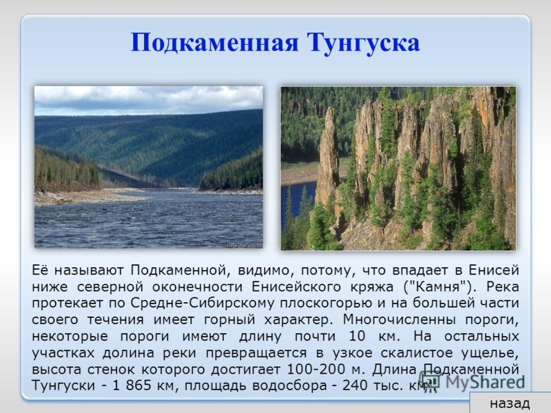 Подкаменная Тунгуска Её называют Подкаменной, видимо, потому, что впадает в Енисей ниже северной оконечности Енисейского кряжа (
