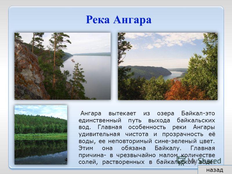Река Ангара Ангара вытекает из озера Байкал-это единственный путь выхода байкальских вод. Главная особенность реки Ангары удивительная чистота и прозрачность её воды, ее неповторимый сине-зеленый цвет. Этим она обязана Байкалу. Главная причина- в чре