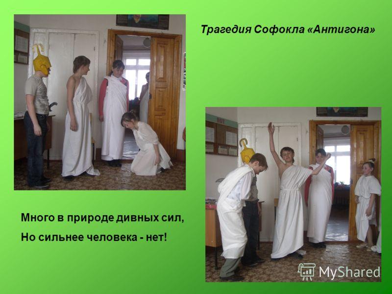 Трагедия Софокла «Антигона» Много в природе дивных сил, Но сильнее человека - нет!