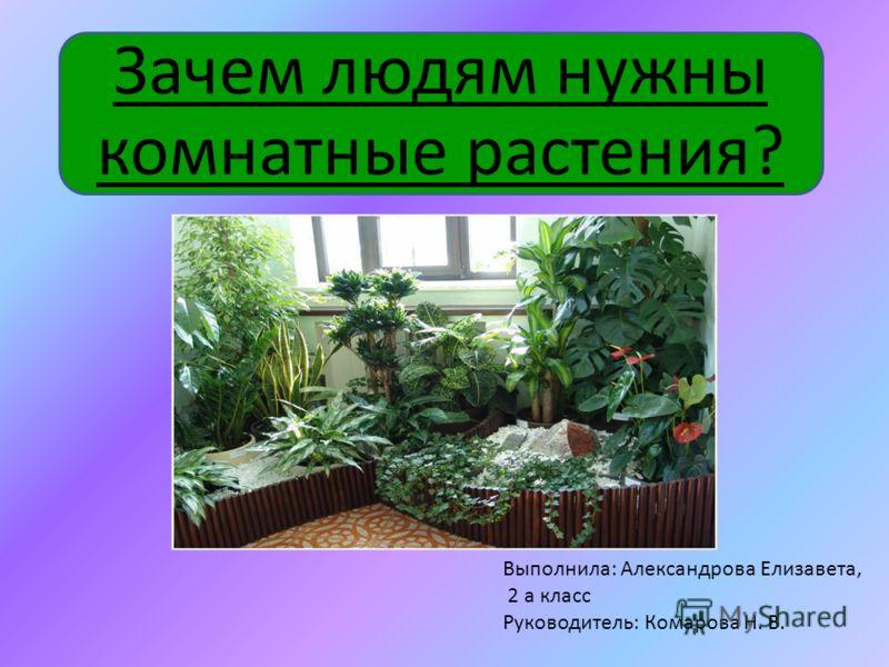 Зачем людям нужны комнатные растения? Выполнила: Александрова Елизавета, 2 а класс Руководитель: Комарова Н. В.
