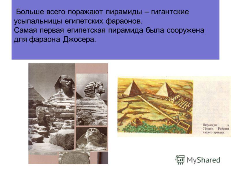 Древние египтяне выращивали ячмень, пшеницу, виноград, смоквы и финики, разводили крупный и мелкий рогатый скот. Нашли более пригодный материал для письма - папирус
