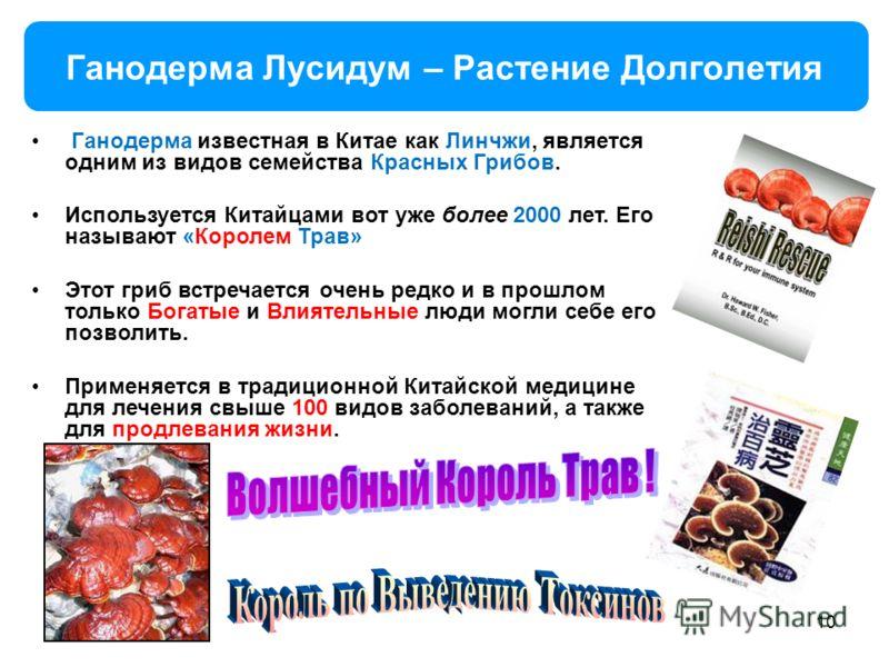 Ганодерма Лусидум – Растение Долголетия 10 Ганодерма известная в Китае как Линчжи, является одним из видов семейства Красных Грибов. Используется Китайцами вот уже более 2000 лет. Его называют «Королем Трав» Этот гриб встречается очень редко и в прош