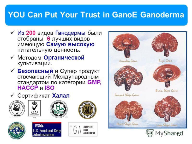 15 YOU Can Put Your Trust in GanoE Ganoderma Из Ганодермы Из 200 видов Ганодермы были отобраны 6 лучших видов имеющую Самую высокую питательную ценность. Методом Органической культивации. Безопасный и Супер продукт отвечающий Международным стандартом