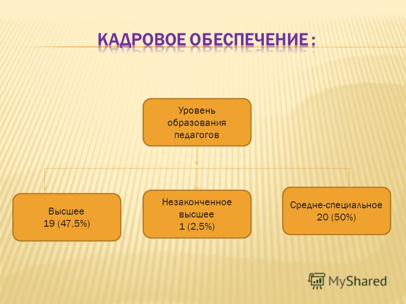Уровень образования педагогов Средне-специальное 20 (50%) Незаконченное высшее 1 (2,5%) Высшее 19 (47,5%)