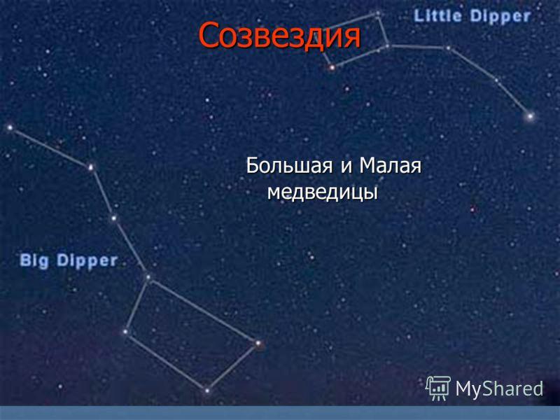 Созвездия Большая и Малая медведицы