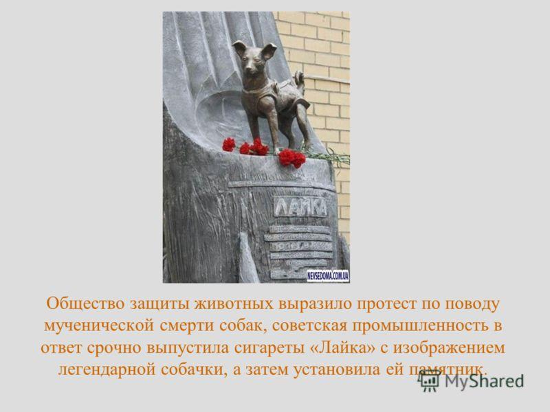 Общество защиты животных выразило протест по поводу мученической смерти собак, советская промышленность в ответ срочно выпустила сигареты «Лайка» с изображением легендарной собачки, а затем установила ей памятник.
