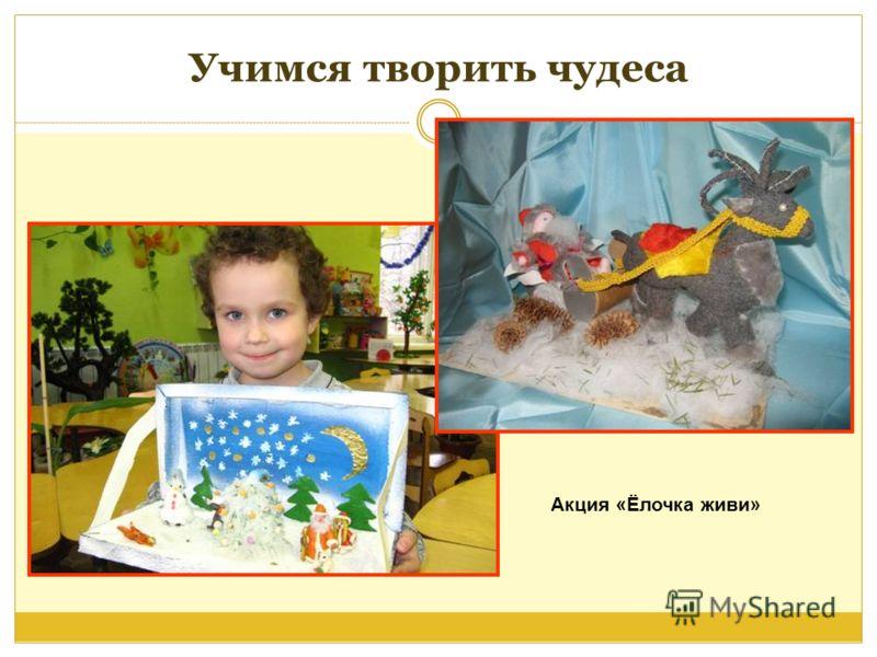 Учимся творить чудеса Акция «Ёлочка живи»