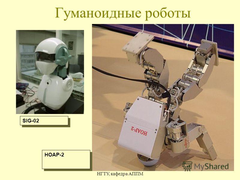 Гаврилов А.В. НГТУ, кафедра АППМ 11 Гуманоидные роботы SIG-02 HOAP-2
