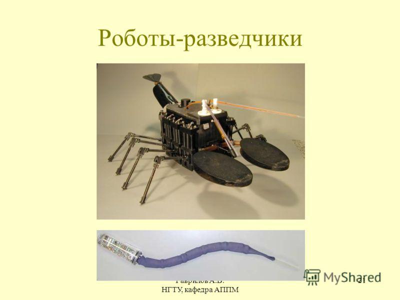 Гаврилов А.В. НГТУ, кафедра АППМ 21 Роботы-разведчики