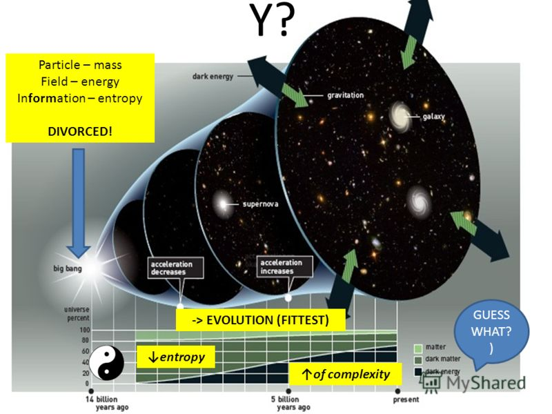 GUESS WHAT? ) Particle – mass Field – energy Information – entropy DIVORCED! -> EVOLUTION (FITTEST) of complexity entropy Y?