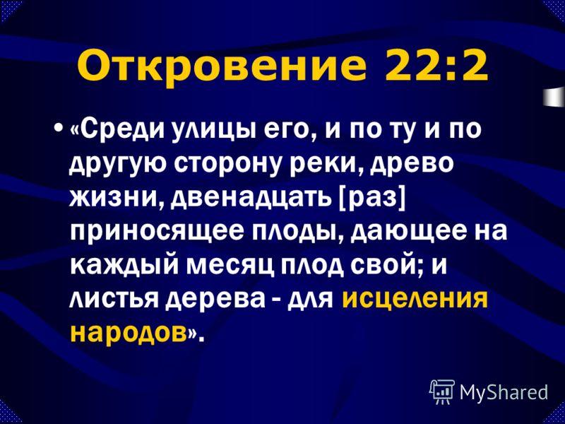 Откровение 21:24-27 «Спасенные народы будут ходить во свете его, и цари земные принесут в него славу и честь свою. Ворота его не будут запираться днем; а ночи там не будет. И принесут в него славу и честь народов. И не войдет в него ничто нечистое и