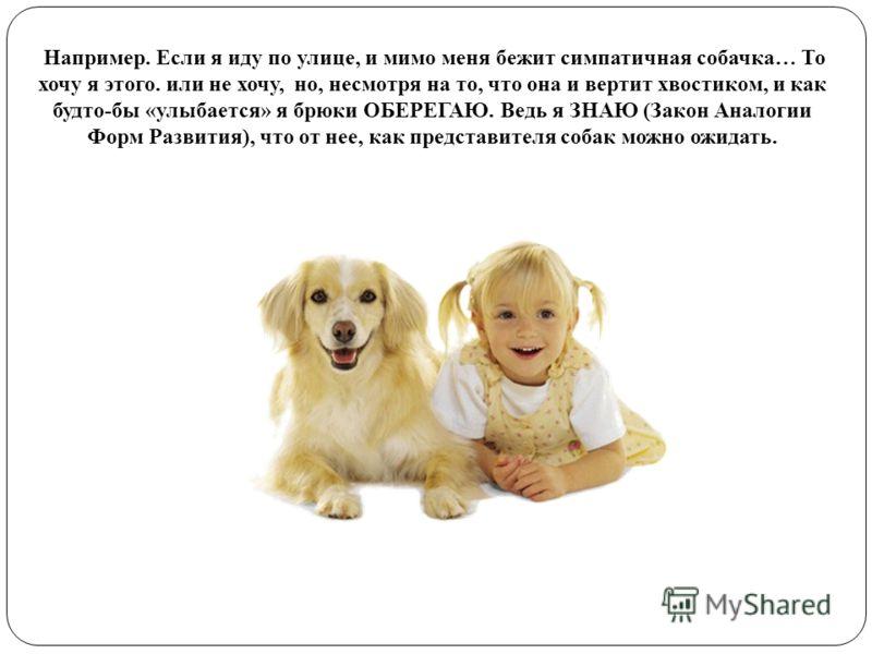 Например. Если я иду по улице, и мимо меня бежит симпатичная собачка… То хочу я этого. или не хочу, но, несмотря на то, что она и вертит хвостиком, и как будто-бы «улыбается» я брюки ОБЕРЕГАЮ. Ведь я ЗНАЮ (Закон Аналогии Форм Развития), что от нее, к