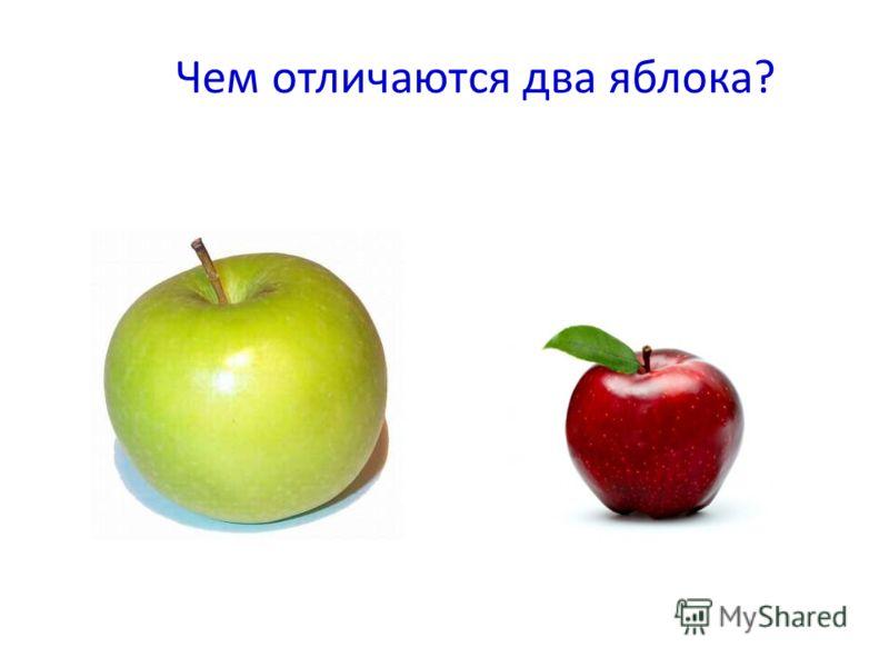 Чем отличаются два яблока?