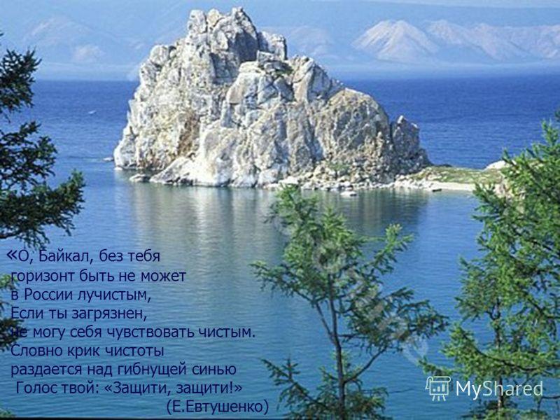 « О, Байкал, без тебя горизонт быть не может в России лучистым, Если ты загрязнен, не могу себя чувствовать чистым. Словно крик чистоты раздается над гибнущей синью Голос твой: «Защити, защити!» (Е.Евтушенко)