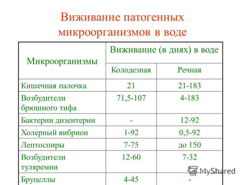 Виживанне патогенных микроорганизмов в воде Микроорганизмы Виживание (в днях) в воде КолодезнаяРечная Кишечная палочка2121-183 Возбудители брюшного тифа 71,5-1074-183 Бактерии дизентерии-12-92 Холерный вибрион1-920,5-92 Лептоспиры7-75до 150 Возбудите