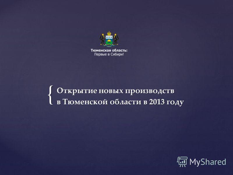 { Открытие новых производств в Тюменской области в 2013 году