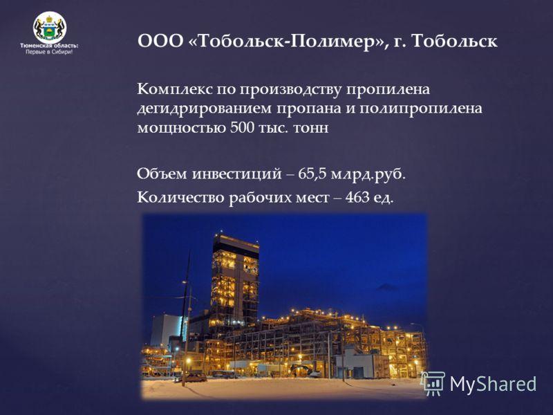 ООО «Тобольск-Полимер», г. Тобольск Комплекс по производству пропилена дегидрированием пропана и полипропилена мощностью 500 тыс. тонн Объем инвестиций – 65,5 млрд.руб. Количество рабочих мест – 463 ед.