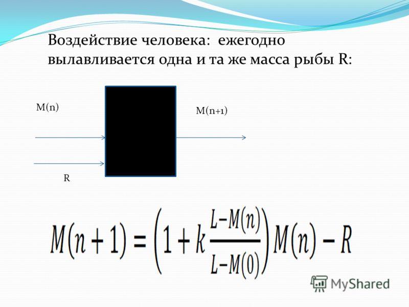 Воздействие человека: ежегодно вылавливается одна и та же масса рыбы R: M(n) M(n+1) R