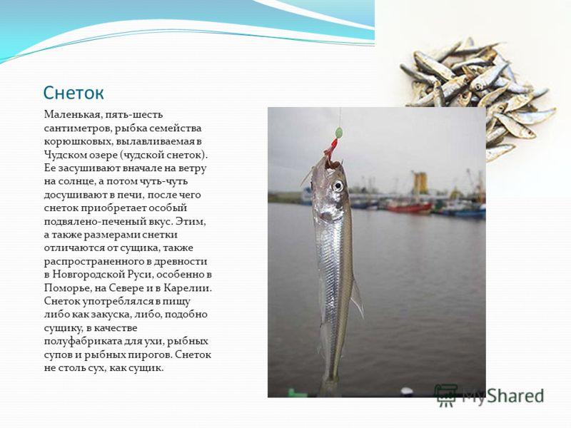 Снеток Маленькая, пять-шесть сантиметров, рыбка семейства корюшковых, вылавливаемая в Чудском озере (чудской снеток). Ее засушивают вначале на ветру на солнце, а потом чуть-чуть досушивают в печи, после чего снеток приобретает особый подвялено-печены